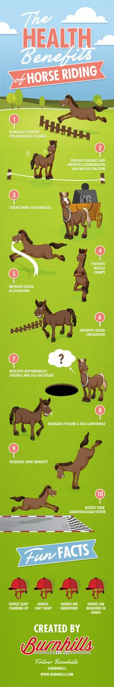 Infographic Of The Day: The Health Benefits Of Horse Riding