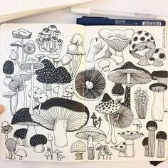This is one of my favorites I made @creativebug Draw a day challenge in January this year. I'm so grateful that I came across this project! I should do more daily project.. #CBDrawADay #creativebug #sketchbook #moleskineart #linedrawing #doodle #mushroom #doodling #mymoleskine
