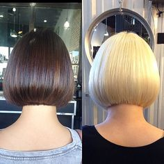 If this photo is the color transformation from brunette to blonde, that is amazing! Short Bob Haircuts, Straight Hairstyles, Cool Hairstyles, Short Hair Cuts, Short Hair Styles, Brown Blonde Hair, Great Hair, Hair Inspiration, Hair Makeup