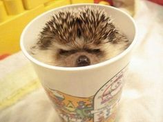 spiked coffee :)