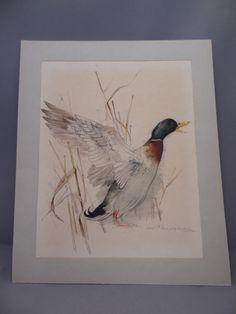 Mads Stage  Duck Mallard Drake Bird by MissCuriositysShop on Etsy, £12.50