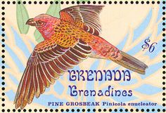 Pine Grosbeak stamps - mainly images - gallery format