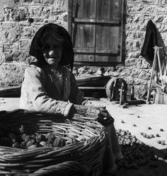 Ηλικιωμένη γυναίκα καθαρίζει καρύδια. Επίδαυρος, 1952 Νικόλαος Τομπάζης Fictional Characters, Art, Art Background, Kunst, Performing Arts, Fantasy Characters, Art Education Resources, Artworks