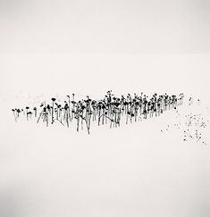 Michael Kenna -repinned by Los Angeles County, CA studio photographer http://LinneaLenkus.com #photography