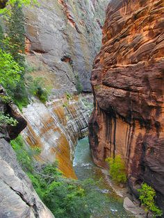 The Zion Narrows in Zion National Park has been photographed so many ways, but my favorite view is from the top.  You can see it's enormity by looking at the hikers in the far bottom right of the image.  Here is more information:  http://www.zionnational-park.com/zion-angels-landing-trail.htm