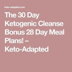 the 30 day ketogenic cleanse pdf