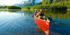 There are around 300 miles of hiking trails near Anchorage. Hiking in Alaska can mean a short walk, a multiday trek, or anything in between. Consider these Anchorage hikes as you plan your first Alaska trek. Hawaii Vacation, Vacation Trips, Day Trips, Seward Alaska, Anchorage Alaska, Alaska Travel, Alaska Cruise, Alaska Trip, Alaska Summer