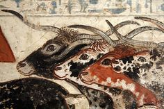 *EGYPT ~ NEBAMUN's CATTLE: from the Tomb-chapel of Nebamun, Thebes, Egypt (ca.1350 B.C.), British Museum, London.