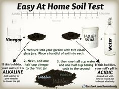 Easy At Home Soil Test. Here's a guide to testing your garden's soil, at home for free. It's a low tech method to see if you have either highly acidic, or extremely alkaline soil.  Most plants thrive in a soil with a neutral (or near neutral) pH.  #gardening #soilph
