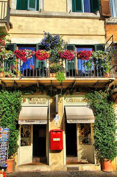 Rome....Italians love flowers...you will see them adorning windows throughout this beautiful country