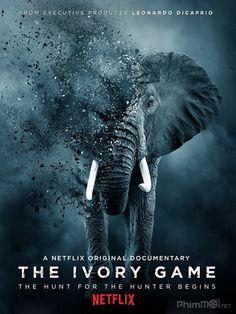 Kẻ Trộm Ngà Voi - The Ivory Game