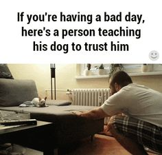 If You're Having A Bad Day, Here's A Person Teaching His Dog To Trust Him. More photos of cute and funny puppies, visit http://pewpaw.com/