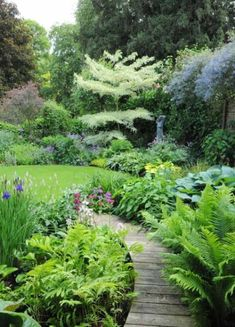 Bog Garden With Wooden Walkway : Interesting And Unusual Bog Garden Home Landscaping, Woodland Garden, Forest Garden, Garden Images, Outdoor Gardens, Garden Planning, Shade Landscaping, Beautiful Gardens, Bog Garden