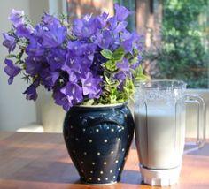 der Ananas Fitness-Drink Kefir, Fitness Drink, Glass Vase, Pineapple Recipes, Pictures