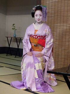 Lovely and charming maiko-san