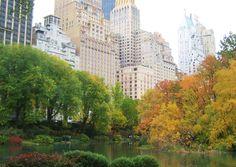 """Autumn in New York City."" (Courtesy nevermore/myBudgetTravel)"