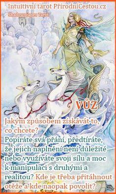 The Chariot - Stephanie Pui-Mun Law - Shadowscapes Tarot - Fantasy Art Fantasy Kunst, Fantasy Art, The Chariot Tarot, Art Carte, Pagan Art, Tarot Major Arcana, Oracle Cards, Fairy Art, Tarot Decks