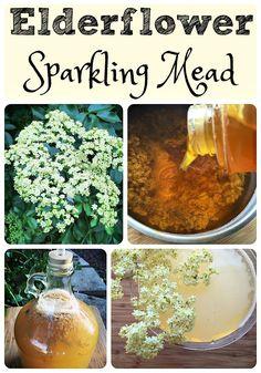 Elderflower Sparkling Mead