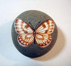 Original realistic orange ochre and black 'tiger moth' by JONBOSCO