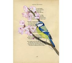 Blue Tit, Bird - Original Watercolor Painting - on Antique Book page - 8x11inches