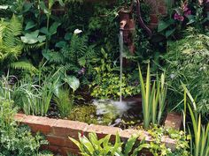 Raised Pond: A garden pond can be enclosed with materials to match the home. In this case, bricks have been used. From HGTV.com's Garden Galleries