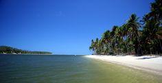 Praia dos Carneiros, Cenário fantástico e diferente como poucos no litoral brasileiro