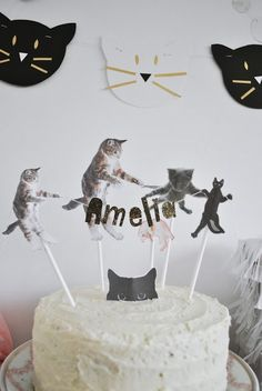 cat birthday cake for cats party ideas - cat birthday cake for cats , cat birthday cake for cats party ideas , cat cake for cats birthday parties Birthday Cake For Cat, 2nd Birthday Parties, Diy Birthday, Birthday Party For Cats, Birthday Kitty, Birthday Wishes, Birthday Ideas, Cat Themed Parties, Kitten Party