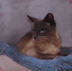 He was the farm cat who never learned how to mouse.  Varmits be damned, Jack skated through life on good looks and eyes that sparkled like sapphires. Painting by Diane Hoeptner