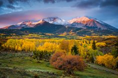 """""""Mt Sopris Sunrise""""   A forest of color leads to one of the most prominent mountains in Colorado."""
