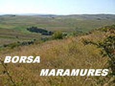 https://www.youtube.com/watch?v=GgHo0i2VLAA  yo bring the turkey   rock club borsa maramures - transilvania Romania - 2016