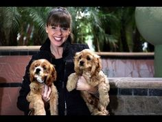 THE BEST DOG ADVICES by Victoria Stilwell!!!
