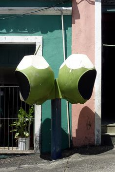 Coconut phones, Salvador de Bahia, Brazil