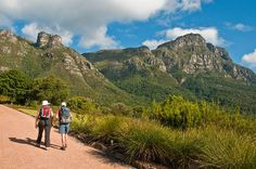 Hike up Skeleton Gorge in Cape Town