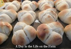A Day in the Life on the Farm: Bloggers CLUE Society celebrates Easter