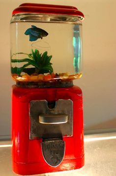 "Awesome! Kids can't add helpful ""decorations"" in for the fish nor can they accidentally over feed them! Brilliant! Candy Dispenser Fish Tank"