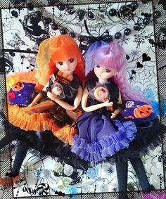 お菓子もらえたね(*^∀^)人(^∀^*)やったね♪    お揃いの魔女衣装は@atelier_cocoprincess 様の作品です♪華やかでお洒落な衣装でうちの子達ちょっと大人っぽく見えるかな…!? 可愛いお菓子もバッグもcocoprincess様のです♪    cocoprincess様のお洋服、ほんとは他にも購入しているのですがうまく撮れなくて…(ノ_・、)お洒落な感じに撮れるようになりたい…っ!    明日が月曜だからみなさん、ハロウィンパーティは今日なのかな(*´-`)? #リカちゃん #licca #doll #liccadoll #kawaii #ハロウィン #halloween