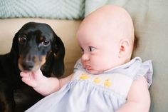 This dog who is teaching his best bud how to side eye at early age.