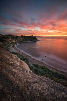 Palo Verde California