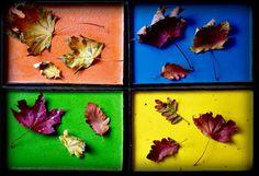 Gosia's Workshop: Four plates so far (in autumn attire)
