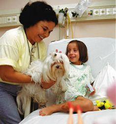 Cadelinha com uma paciente num leito hospitalar