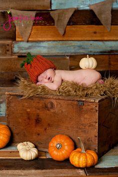 Newborn Boys - fall photo - love the pumpkin on the bum!