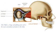articulation-temporomandibular-848x518.jpg (848×518)