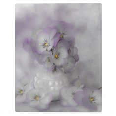 #pansies #pastelpansies #pansy #pansystilllife   #sandrafoster #sandrafosterzazzle #softpansies