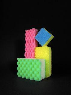 Sponges (iv)