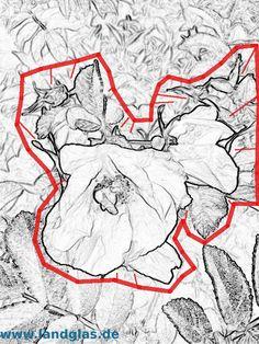 Eine Vorlage fixieren – Landglas.de , Glasgravur und mehr Moose Art, Animals, Contour Line, Templates, Animales, Animaux, Animal, Animais