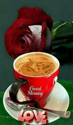 302 Best Good Morning Red Roses Images Bonjour Morning Coffee