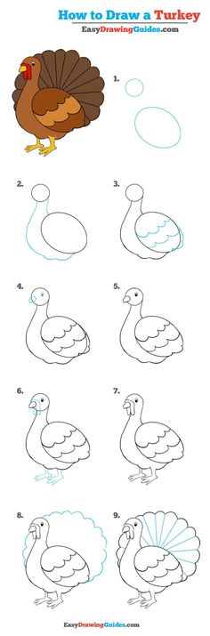 Learn How to Draw a Turkey: Easy Step-by-Step Drawing Tutorial for Kids and Beginners. #turkey #drawing #tutorial. See the full tutorial at https://easydrawingguides.com/how-to-draw-a-turkey-really-easy-drawing-tutorial/