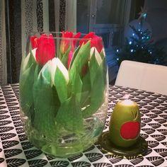 Mukavaa adventtisunnuntain iltaa. Neljä yötä jouluun on.... #tulppaani #tulips' #kukka #kynttilä #joulunaika #christmastime #jul #sunday #decor
