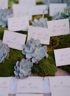 Love. #wedding #events #moss #succulents