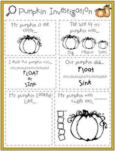 Pumpkin investigation worksheet free printable education pumpkin investigation ibookread Download